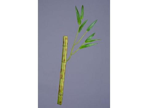 Бамбук стебель с веточкой