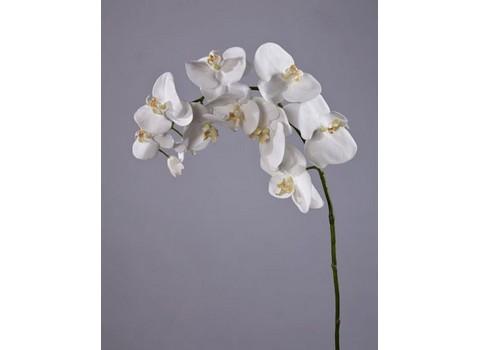 Орхидея Фаленопсис 100см
