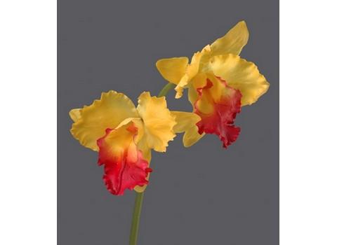 Орхидея Каттлея крупная 42см
